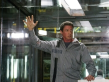 Don't Leave Stallone Hanging